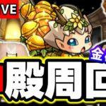 【🔴モンストマルチLIVE】モンストの日!! ベル使用の金確定神殿マルチ!!