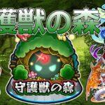 【モンスト】守護獣の森でも少し!雑談&マルチお気軽にご参加ください!